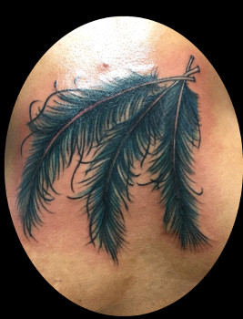 feather up 1